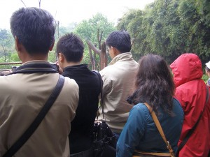 Touristen in Chengdu
