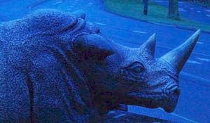Eingang-Nashorn