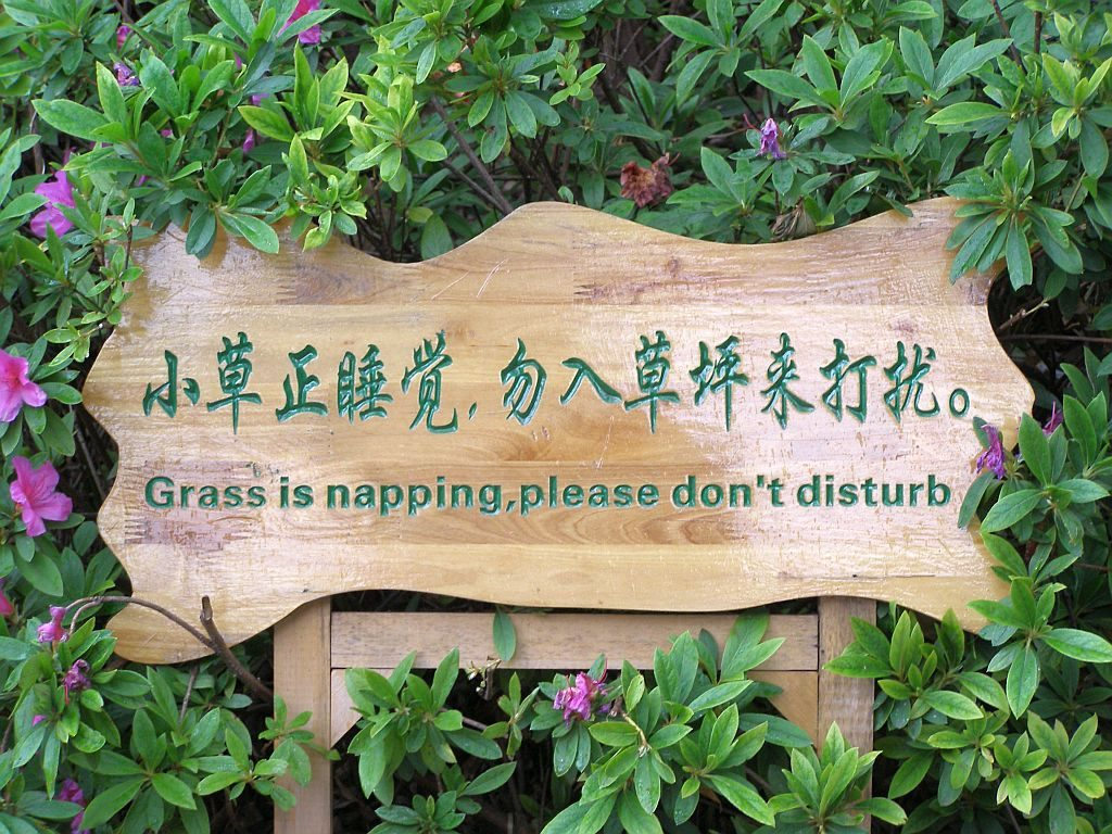 Gras is napping - please do not disturb