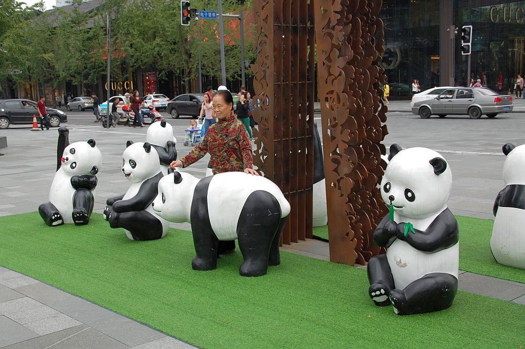 Pandas als beliebtes Fotomotiv im Zentrum Chengdus